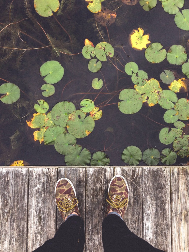 looking down into water from dock unsplash